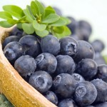 Susan Jones - ch3-pp17-blueberries_559493